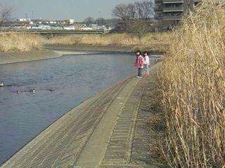 20080227-kawa1.jpg